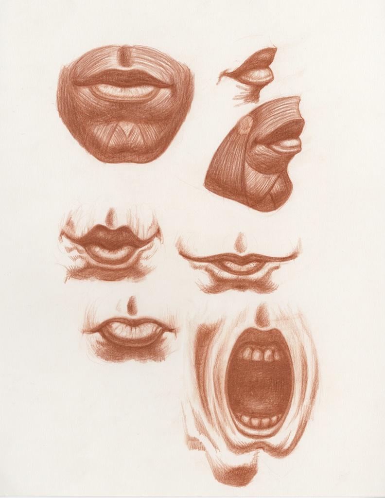Drawing Human Anatomy Ecosia